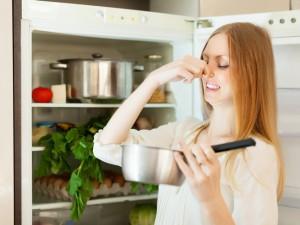 losha mirizma v hladilnik