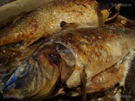 Рецепта на пълнен шаран със сметана и скариди