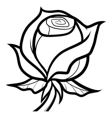 Цветок роза картинка для детей 5