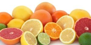 citrusi-606x300