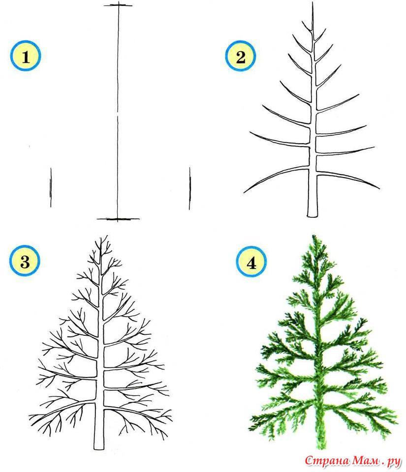 Как се рисува дърво
