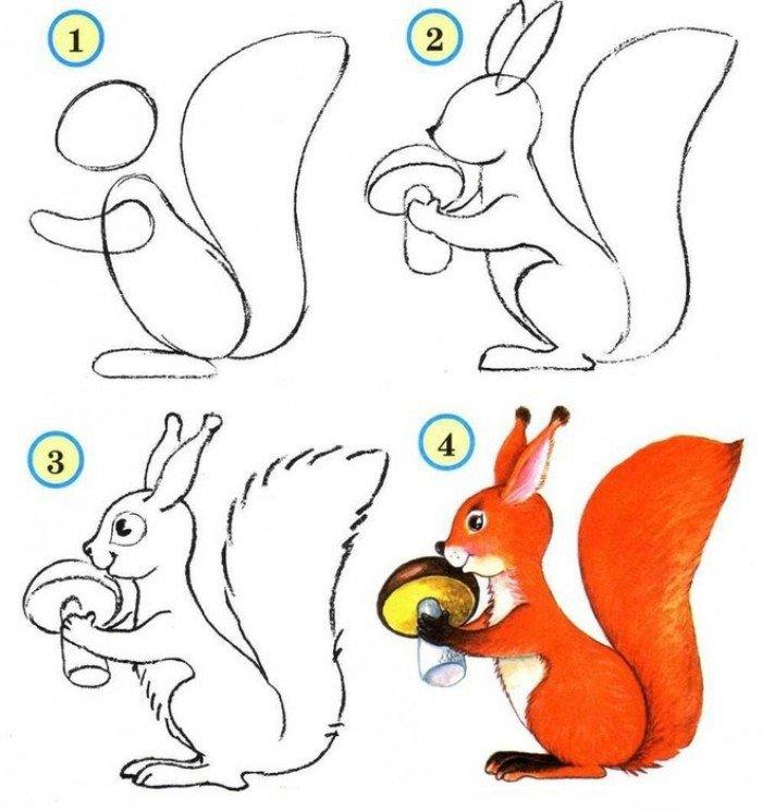 Как се рисува катерица